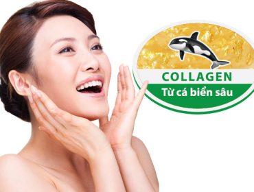 1456306047-collagen-bien-sau-lam-dep-da