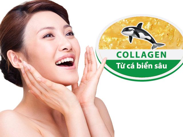do-dan-hoi-da-tu-collagen-ca-bien-sau