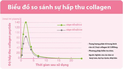 bieu-do-so-sanh-hap-thu-collagen