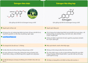 su-khac-nhau-giua-estrogen-thao-duoc-va-HTR