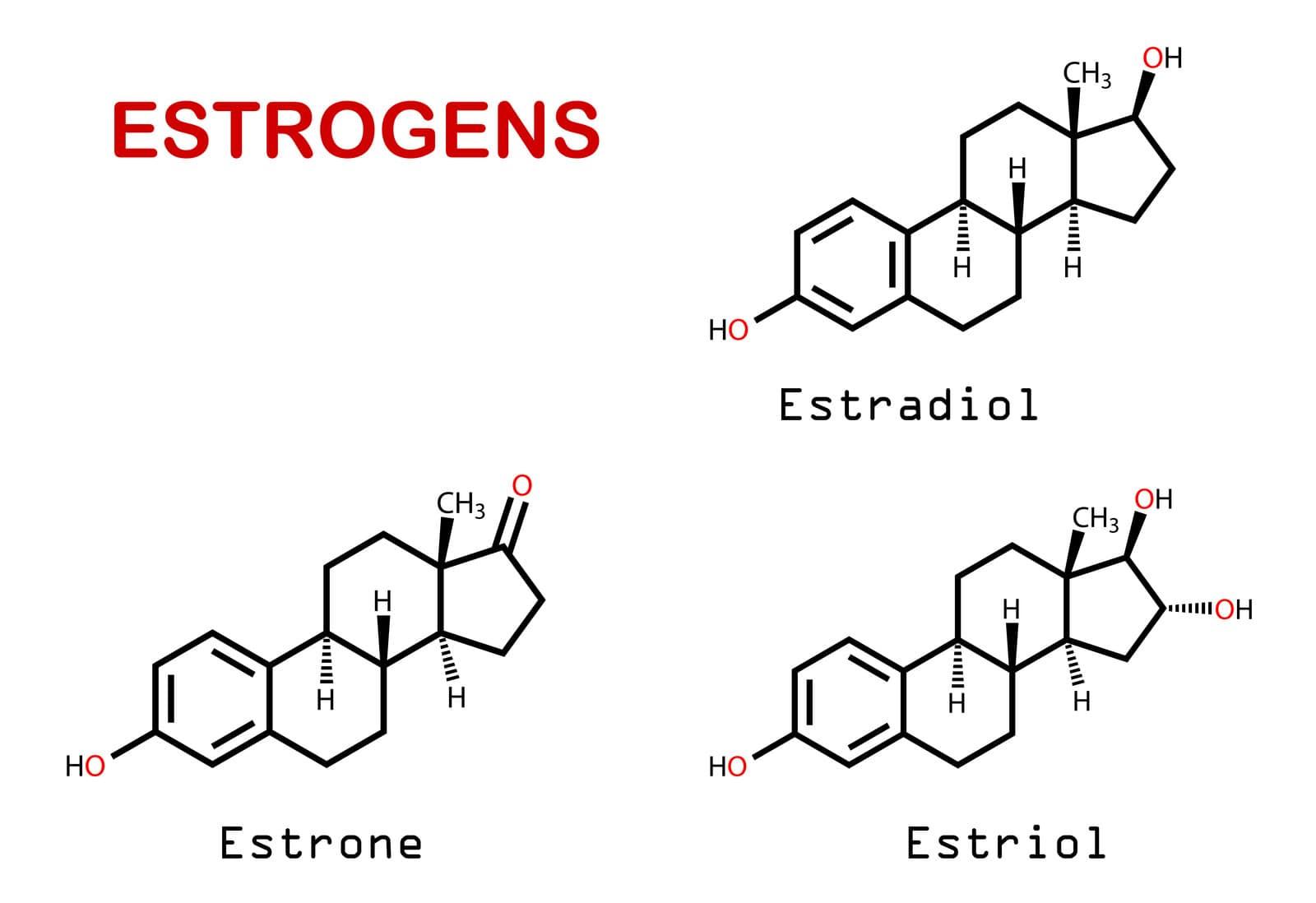 Estrogen là gì? Tác dụng của estrogen đối với phụ nữ