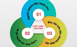 bo-3-yeu-to-vang-tao-nen-chat-luong-sản-pham