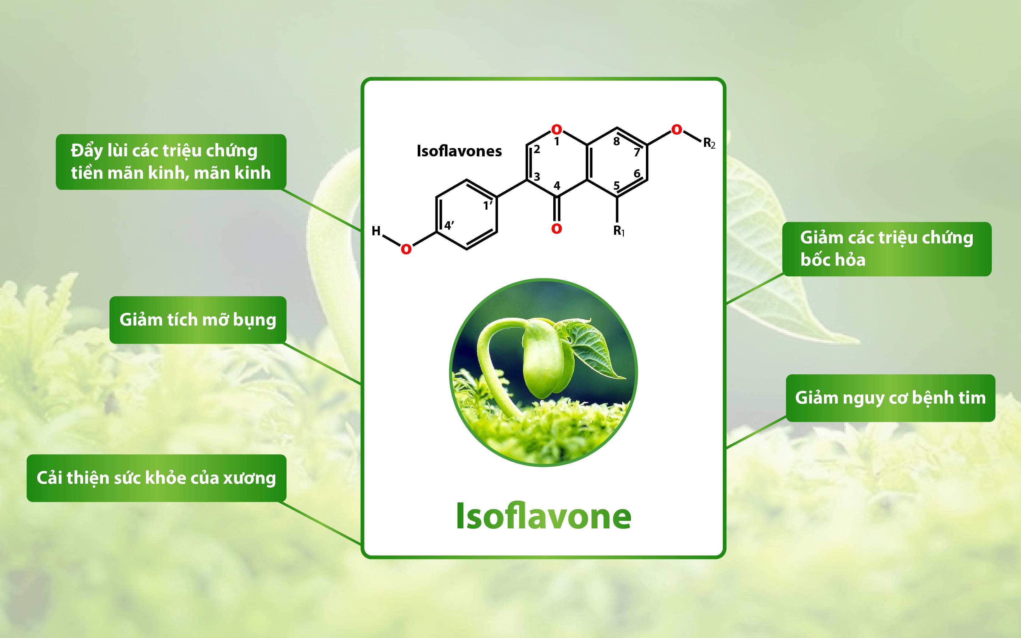 Isoflavones tác dụng như thế nào đến sức khỏe, sắc đẹp và sinh lý nữ?