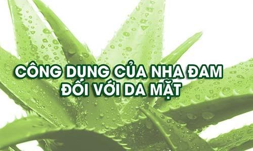 cong-dung-cua-cay-nha-dam-voi-da-mat