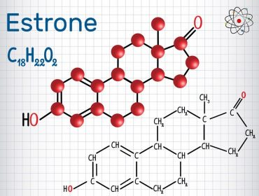 Estrone E1 (estrogen, minor female sex hormone ) - structural chemical formula and molecule model. Sheet of paper in a cage.Vector illustration
