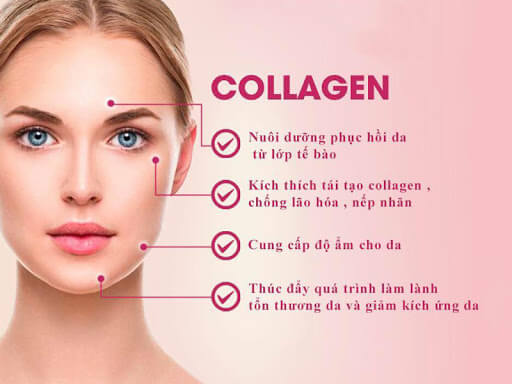 tac-dung-collagen-voi-da