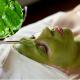TOP 7 cách làm đẹp da mặt từ thiên nhiên hiệu quả nhanh nhất tại nhà