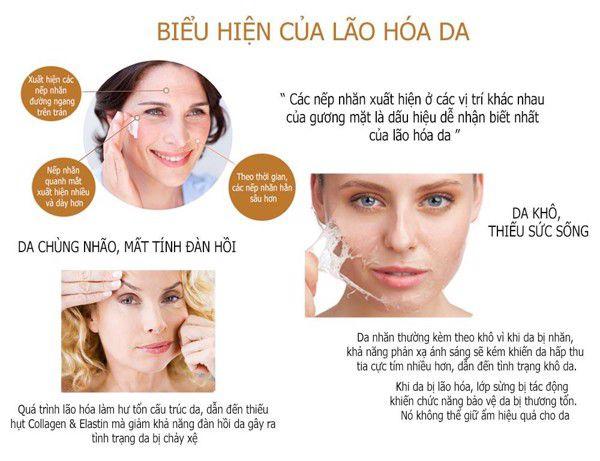 Tổng quan về lão hóa da: Nguyên nhân, dấu hiệu, cách ngăn ngừa